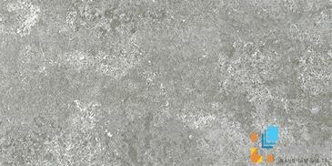 Gạch Aparici Rugo Grey Natural G-3194