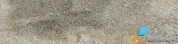 Gạch Aparici Aspen Moss Natural G-3154