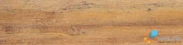 Gạch Aparici Jungle Oak Cenefa-3 G-2089
