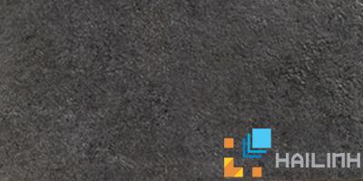 Gạch Aparici Stonegate Black G-3258